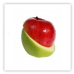 Философ подбросил на ладони яблоко...