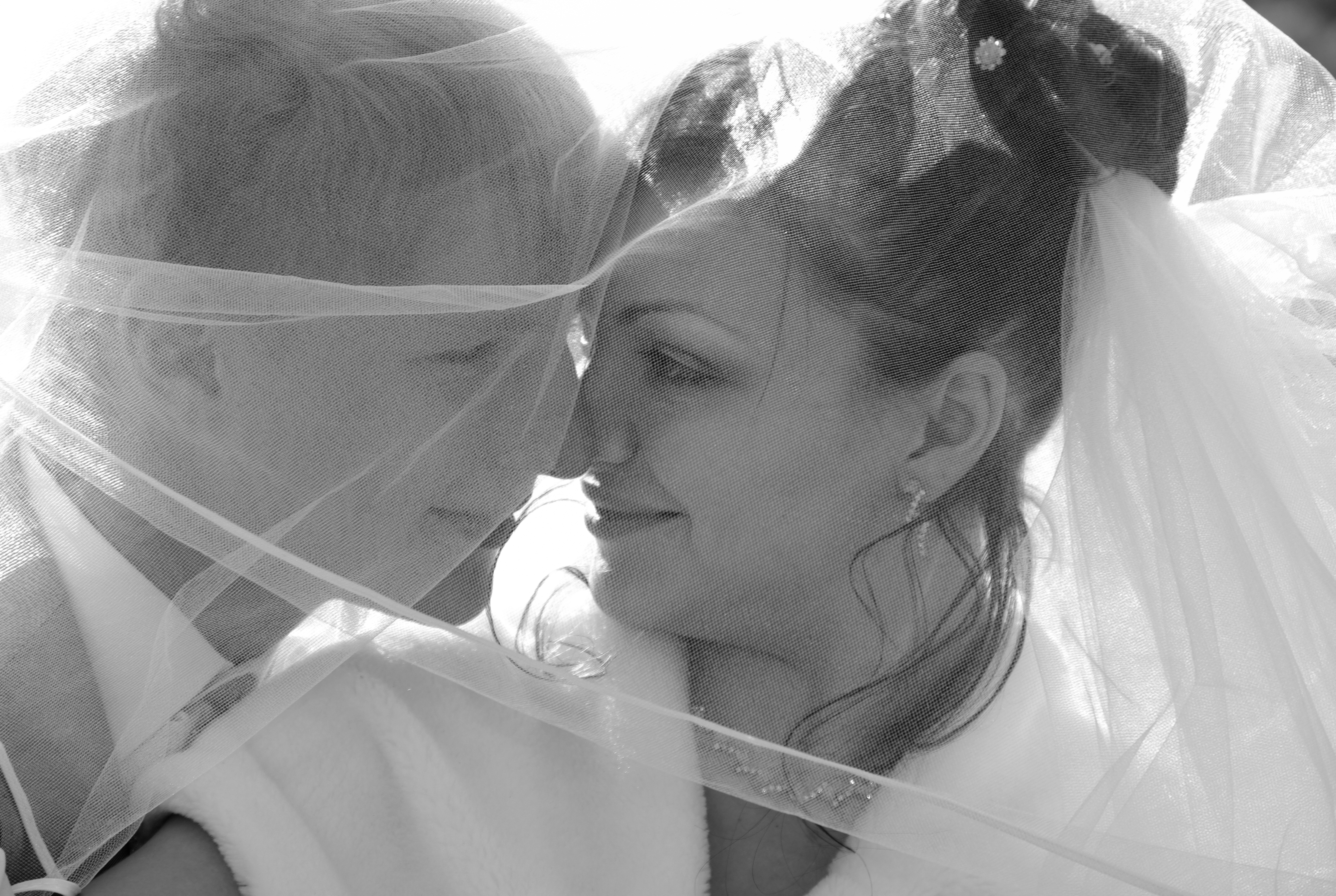 love Story  http://www.nn.ru/~gall...
