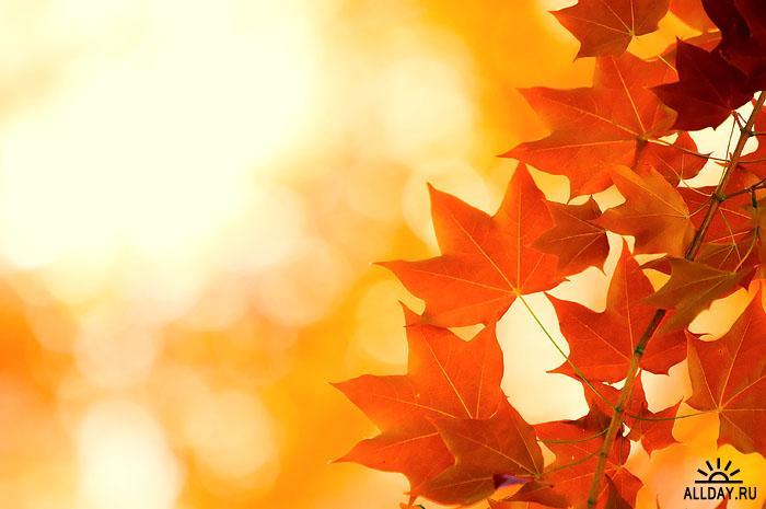 Осенняя пора! очей очарованье! - о...