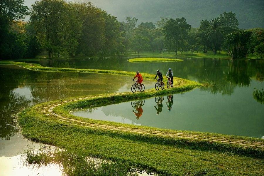 Красивые велосипедные дорожки   ww...