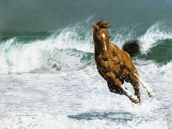 пролетающая лошадка..