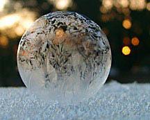 Сбор заказов. Шоу мыльных пузырей...