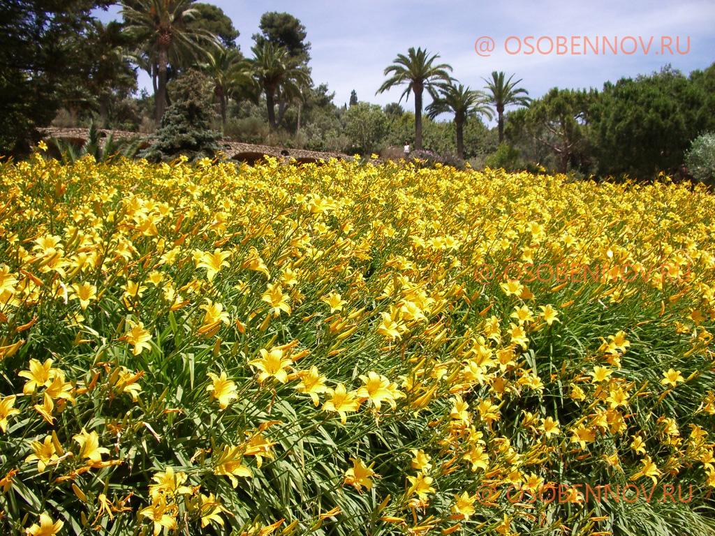 Парк Гуэль в Барселоне   www.osobe...