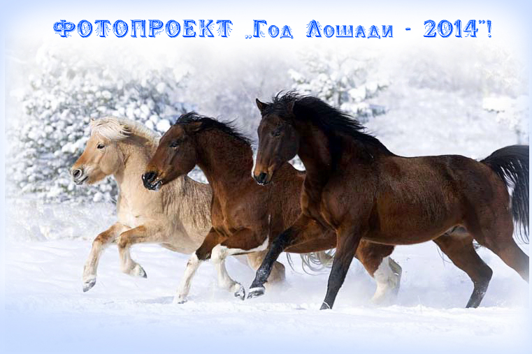 ФОТОПРОЕКТ