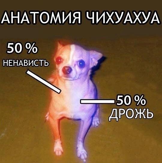 Однако)))