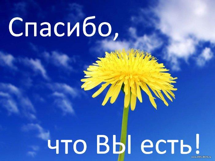 ИТОГИ АКЦИИ-КОНКУРСА «Спасибо от Ф...