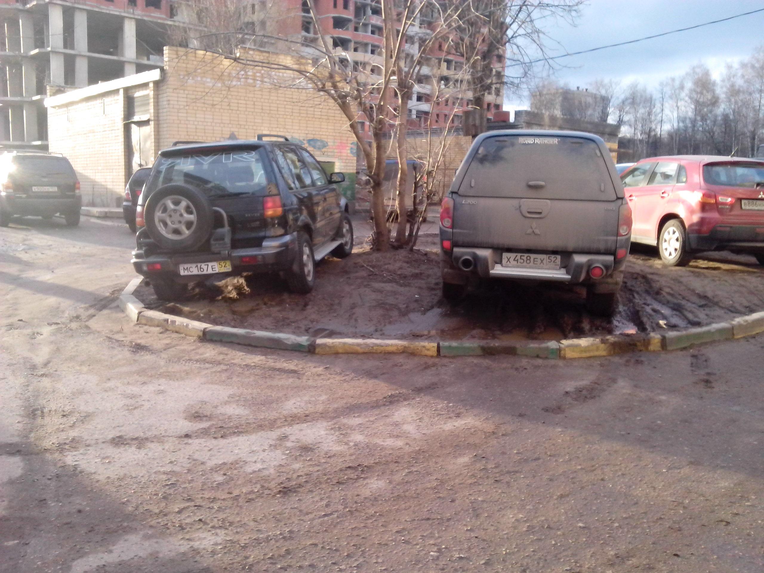 Газон или не газон?   www.nn.ru/co...