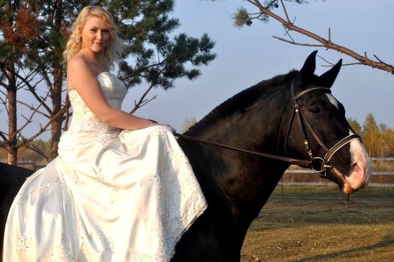 Лошади на свадьбе – это оригинальн...