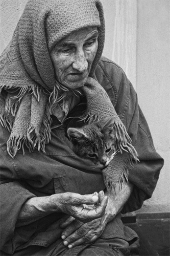 Бабушка с котёнком   Сидела у подъ...