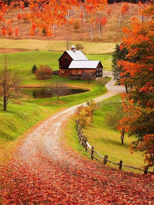 Пахнет осенью. А я люблю осень. Чт...