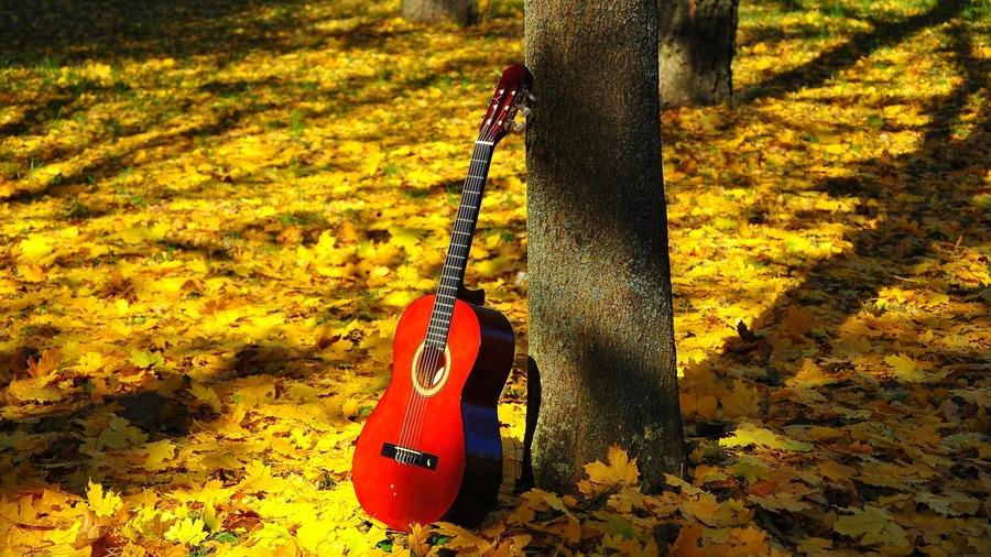 Моя гитара  Геннадий Южаков   Внов...