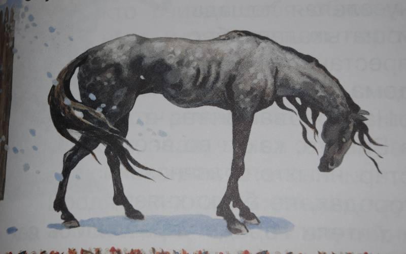 СЛЕПАЯ ЛОШАДЬ.   Слепая лошадь ход...