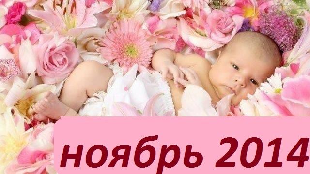 Сбор заказов. Фламинго-ноябрь. Качественная и красивенная одежда для детей. Огромный выбор ясельки. БЕЗ РЯДОВ!!!
