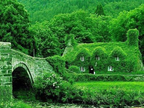 Экологически чистый дом в Англии