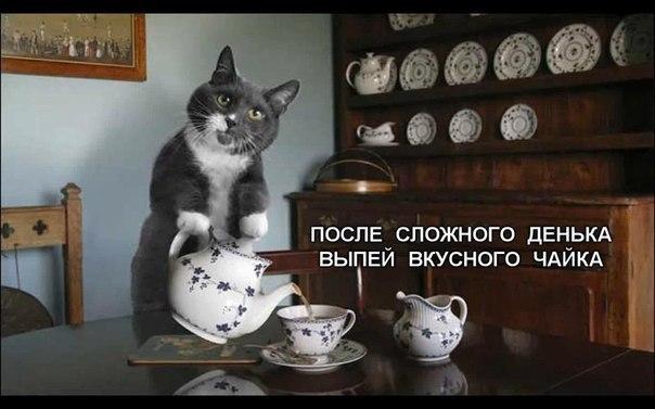 Сбор заказов. Приветствуем настоящих гурманов настоящего чая и кофе!