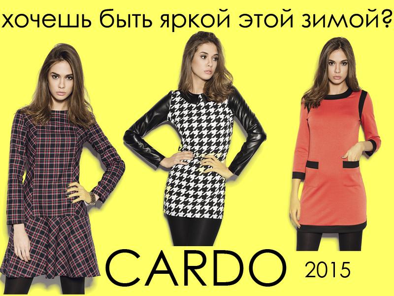 Cardo-8.