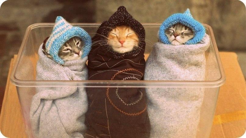 ТриK/о/т/я/та. Сделай жизнь теплее - 14. Вязанный детский трикотаж российского производства от 68 до 176 роста. Без