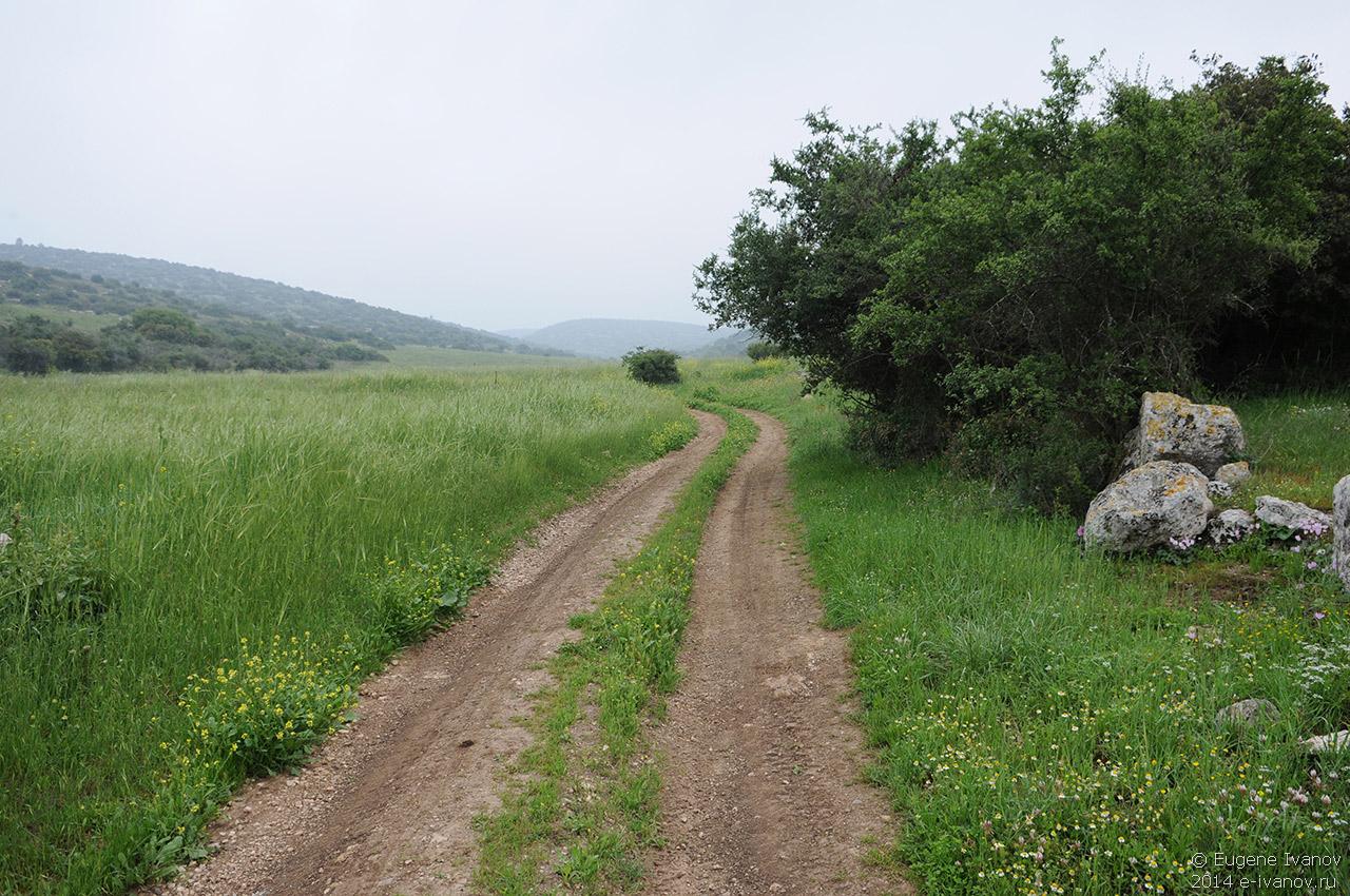 24 марта 2014. Израиль. Волшебные горы и поля