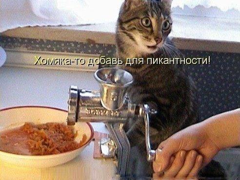 � ������� ���� ������)))