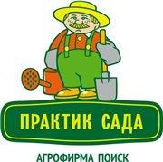 Семена цветов и овощей от агрофирмы Пousk