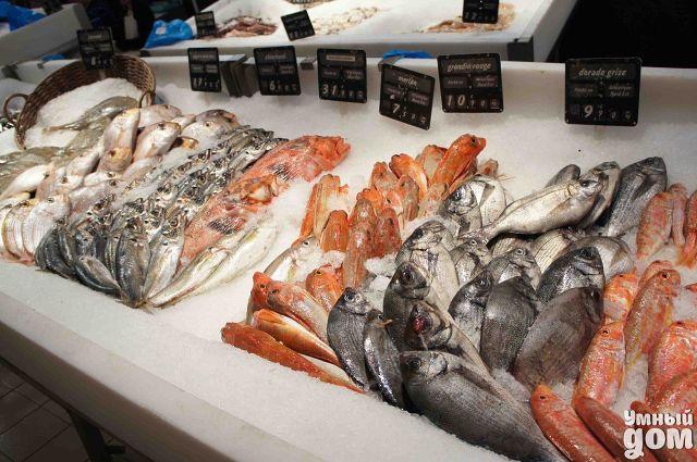 Рыба на прилавке: как выбрать качественный продукт