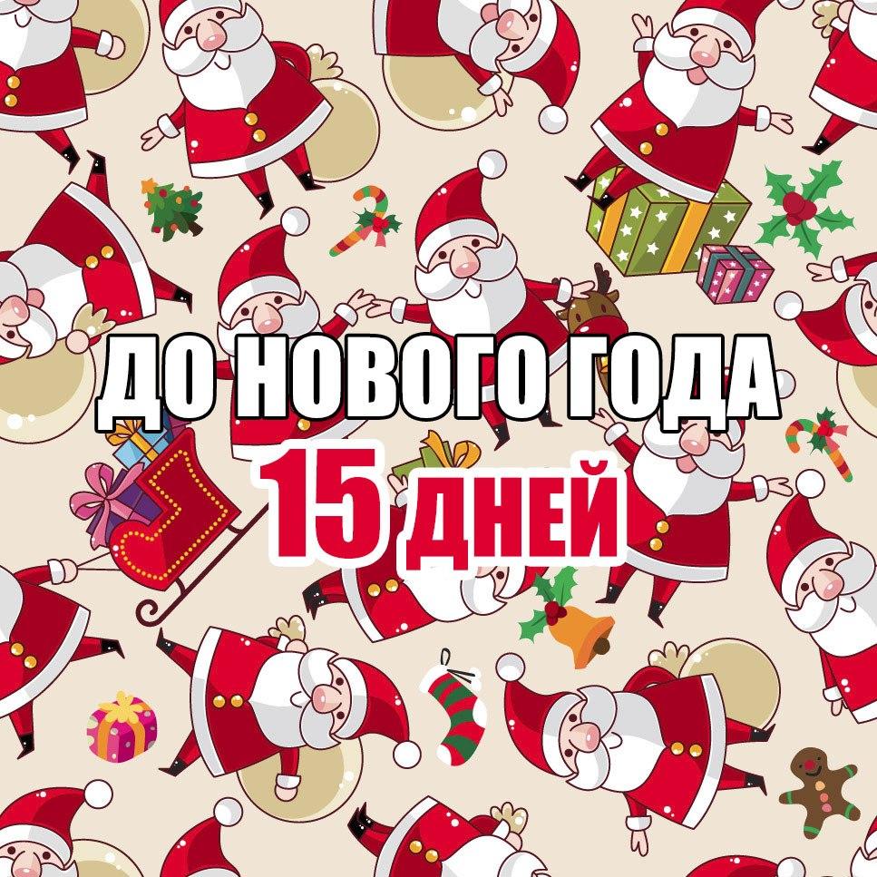 До Нового года 15 дней !