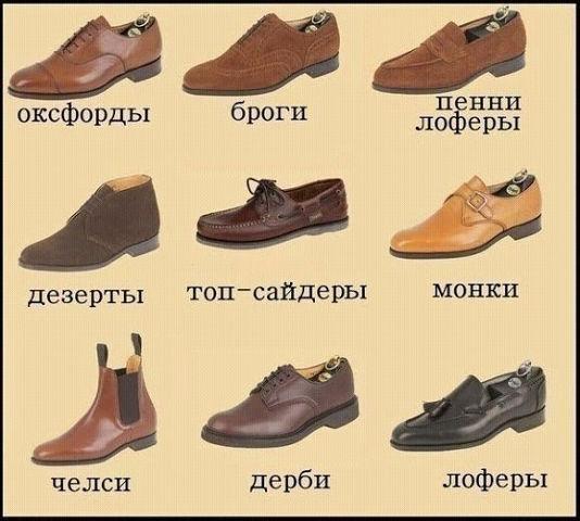 Правильные названия типов мужской обуви