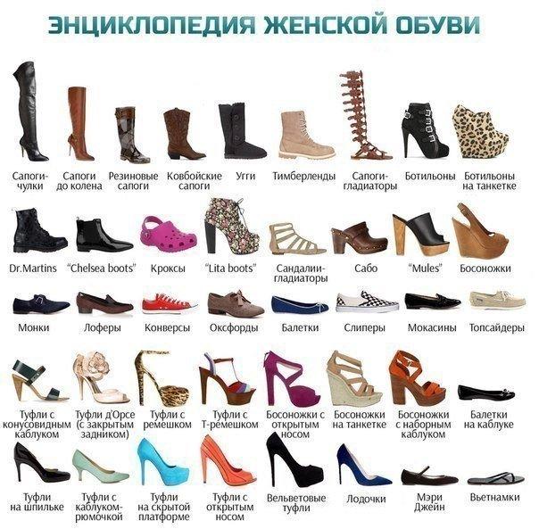 Правильные названия типов женской обуви