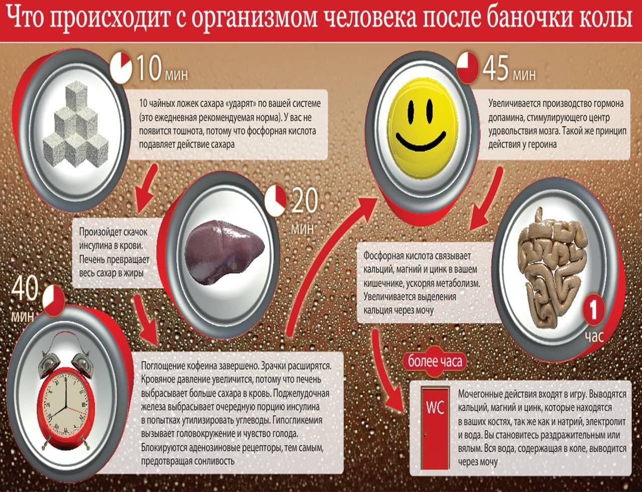 Действие Кока-Колы на человеческий организм