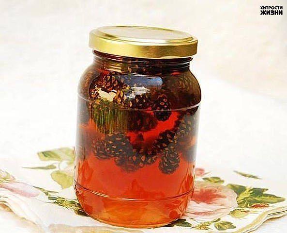 Лечебный сироп из еловых и сосновых шишек