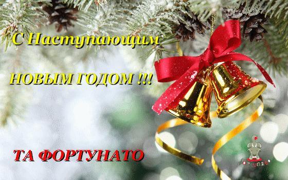 Поздравление с Новым Годом!!!!