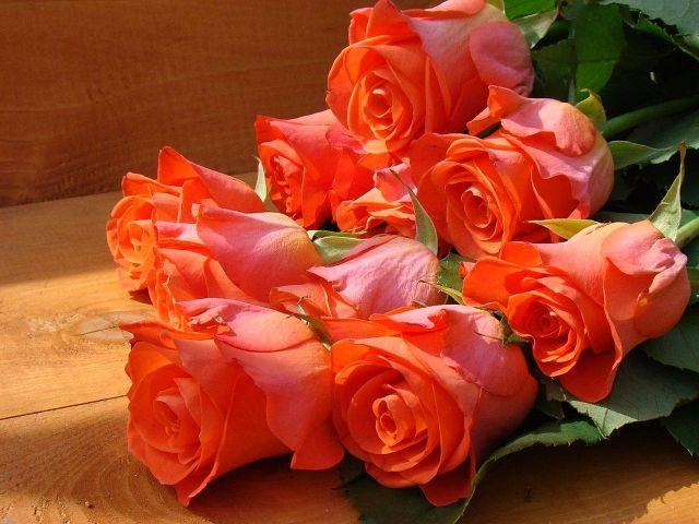 Как сохранить букет роз надолго. 5 золотых правил