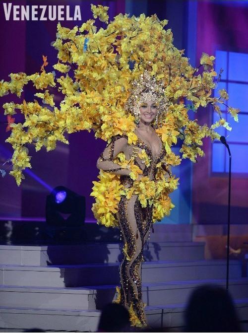 Мисс Вселенная 2015 года. Национальные костюмы.