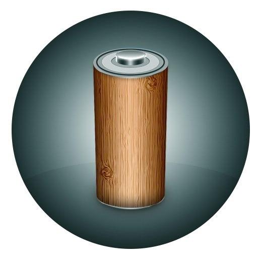 Исследователи из США создали аккумуляторы из древесины