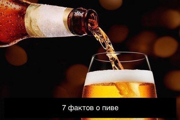 7 фактов о пиве