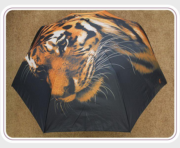 Сбор заказов. Зонты Orion. Современная защита от дождя. Женские: полиэстр, атлас, клетка, хамелион, сатин. Мужские