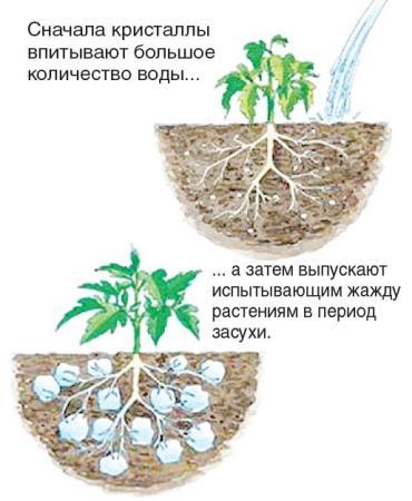 Сбор заказов. Гидрогель - незаменимый помощник садовода и цветовода!-2/2015