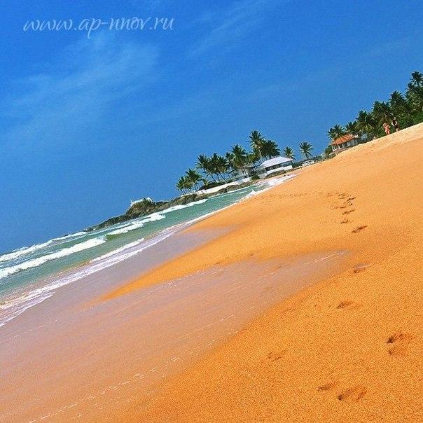 Вопрос-Ответ: Виза на Шри-Ланку