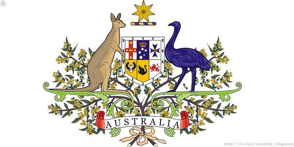 По распространённому мнению кенгуру и страус эму не могут ходить назад.