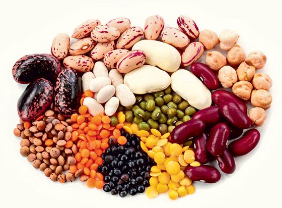 Можно ли без ущерба здоровью есть только растительную пищу?