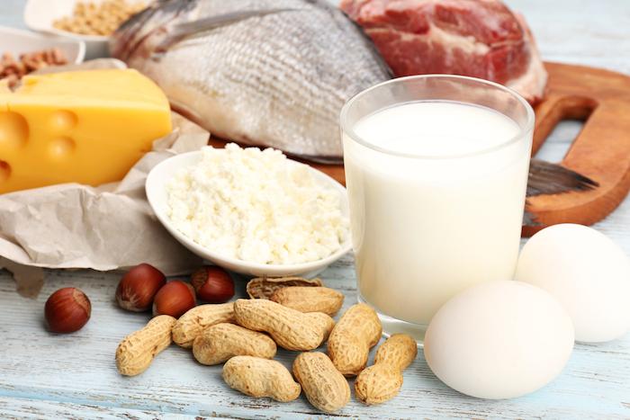Белковая диета сокращает продолжительность жизни