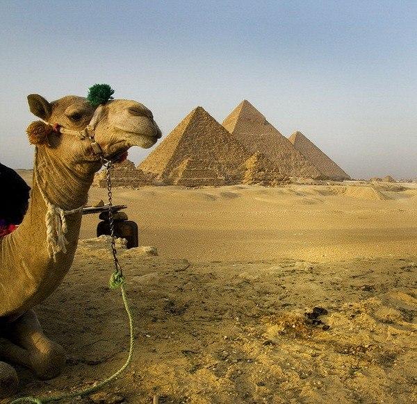 Египет с вылетом из Москвы 7 дней 25.04.2015 все включено