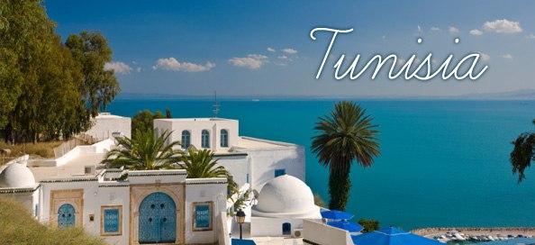 Тунис из Нижнего Новгорода вылет 29 мая на 10 ночей