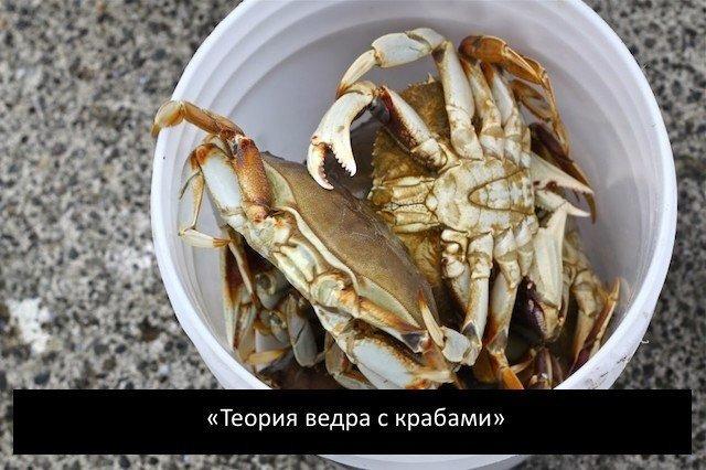 Есть такая чудесная штука, называется crab bucket theory теория ведра с крабами