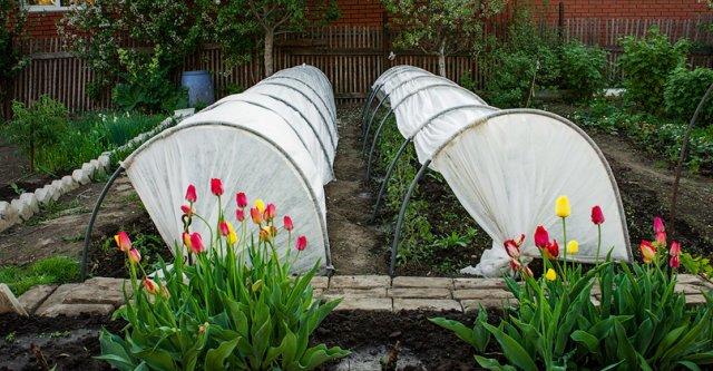 Сбор заказов. Чудо парник По@дсне@жник настоящая находка для садовода 4. Хит продаж!!!!!!!! Экспресс сбор 5 дней