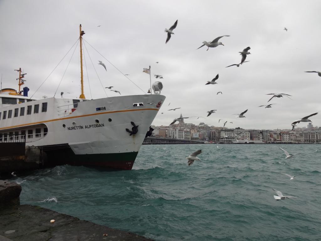 Самостоятельное путешествие по Турции (продолжение)