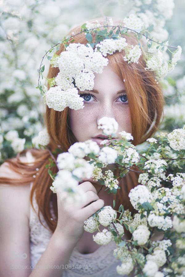 Белая черемуха душистая.... Щедро зацвела в моем краю...