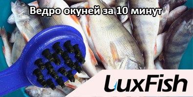 Сбор заказов. Профессиональная рыбочистка и ножницы L//uxF//ish! Чистим рыбу с удовольствием! Отличный презент рыбакам