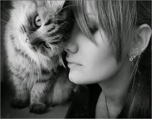 О женщинах и кошках