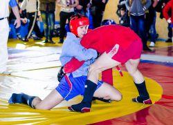 Открытый Кубок города Кстово по борьбе в партере, посвященный Дню защиты детей пройдет 31 мая в Академии самбо